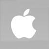 Apple unwraps mini-iPad to take on Amazon, Google