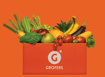 Grofers FY16 revenue drops, losses widen