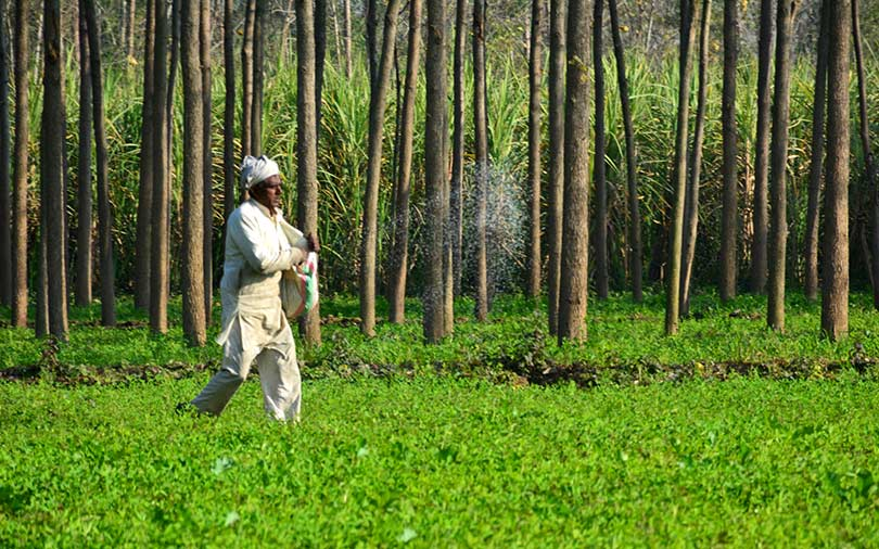Agri-tech startup Agricxlab raises funding from Ankur Capital