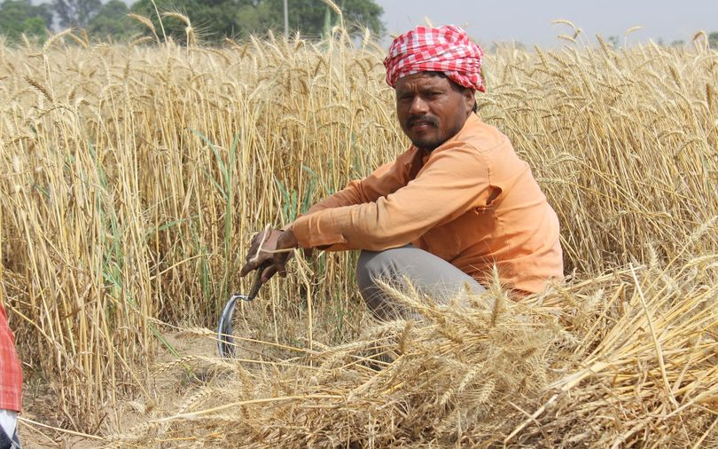 Can this startup's AI-based quality assessment tool help farmers get a fair price?