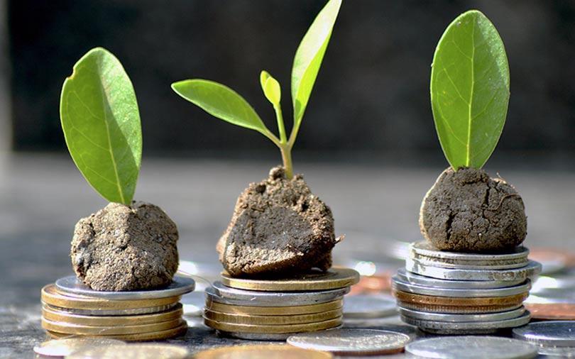 Startup incubation platform India Accelerator raises seed funding