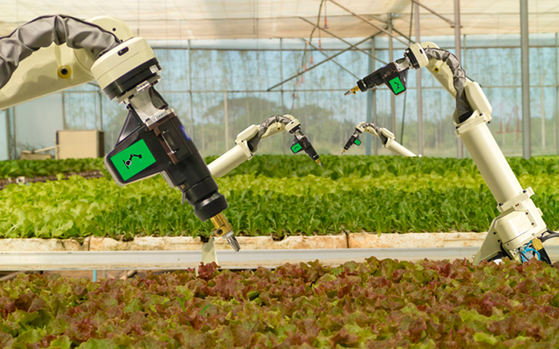 Agri-tech startup Intello Labs gets seed funding from Nexus, Omnivore