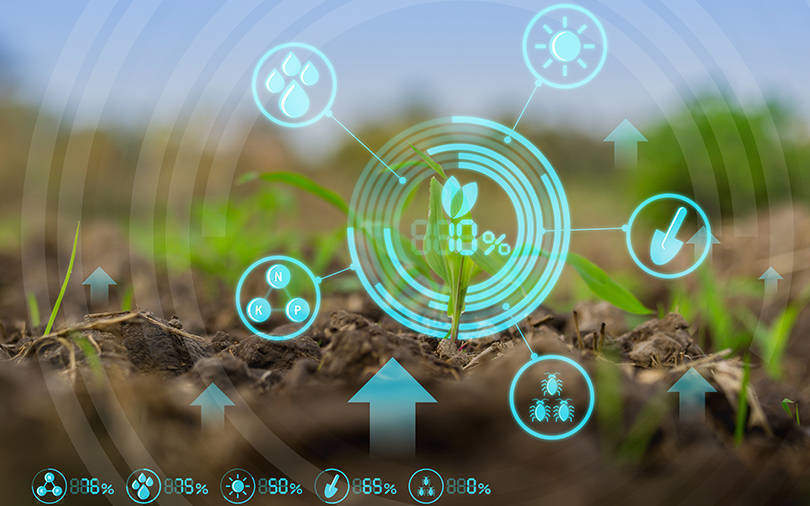 T-Hub, Beanstalk AgTech partner to facilitate market access for agritech startups