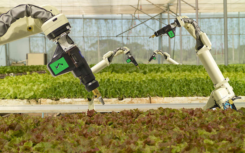 HPE to set up IoT-enabled training centre for agri-tech innovations
