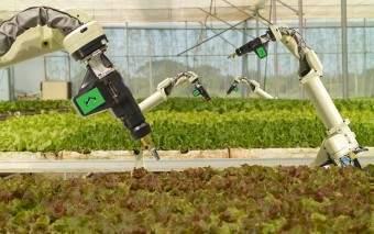 agriculture | TechCircle - India startups, internet, mobile, e