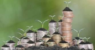 Lightbox leads $32 mn Series C round in agri-tech startup Waycool