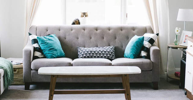 Lightbox, Vivriti Capital join furniture rental startup Furlenco's $10 mn growth round