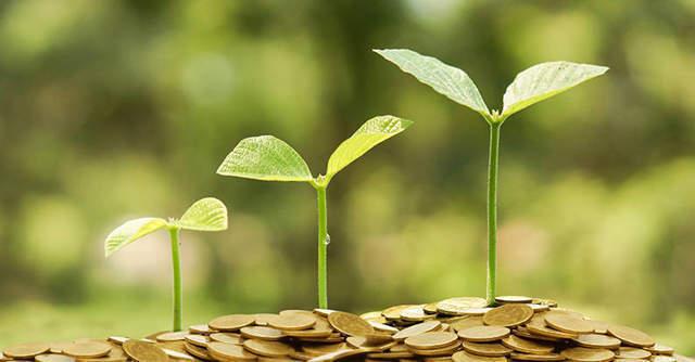 Agritech startup Crofarm raises $1 million in a bridge round, launches B2B2C platform Otipy